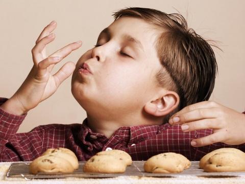 Grasas Animales: Incrementando el deseo de consumir productos de panadería y snacks