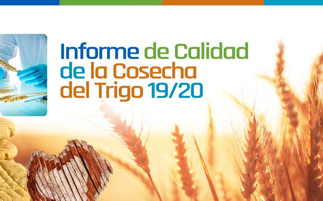 Descarga el Informe de Cosecha de Trigo Argentino 19/20