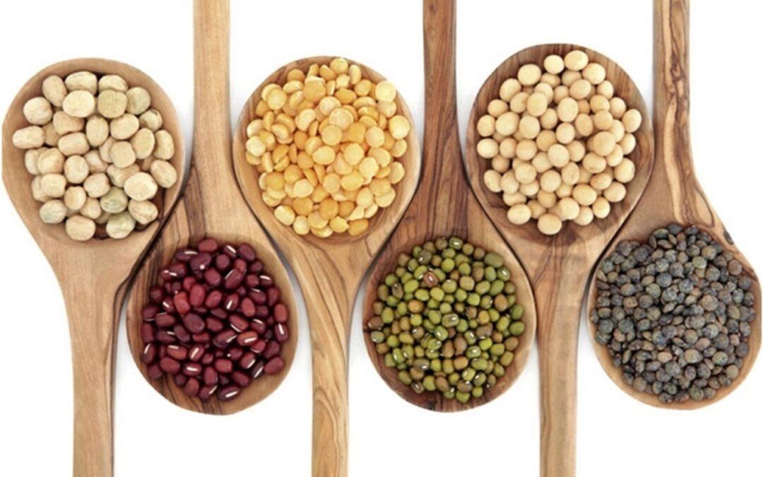 Las legumbres y el agregado de valor en la industria de alimentos